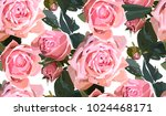 Stock vector floral seamless background pattern watercolor pink garden roses in hand drawn style elegant 1024468171