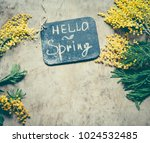 mimosa flowers hello spring... | Shutterstock . vector #1024532485