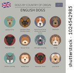 dogs by country of origin.... | Shutterstock .eps vector #1024542985