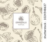 background with granadilla ... | Shutterstock .eps vector #1024548637