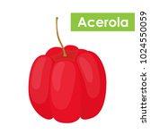 vector acerola berry  barbados...   Shutterstock .eps vector #1024550059