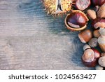 top view of chestnuts and... | Shutterstock . vector #1024563427