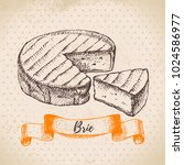 hand drawn sketch brie cheese... | Shutterstock .eps vector #1024586977