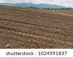 stony field in an arable... | Shutterstock . vector #1024591837
