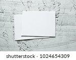 blank mockup paper. brochure... | Shutterstock . vector #1024654309