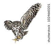 flying owl black and white... | Shutterstock .eps vector #1024660201