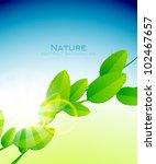 vector shiny branch of leaves   ... | Shutterstock .eps vector #102467657