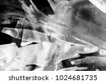 black and white abstract...   Shutterstock . vector #1024681735