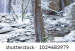 snowy landscape with river and...   Shutterstock . vector #1024683979