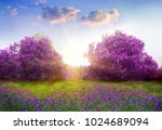 beautiful landscape with spring ... | Shutterstock . vector #1024689094