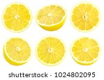collection of fresh yellow... | Shutterstock . vector #1024802095