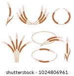 ears of wheat and rye set.... | Shutterstock .eps vector #1024806961