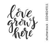 hand drawn word. brush pen... | Shutterstock .eps vector #1024824511