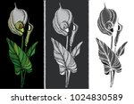 vector set with embroidery... | Shutterstock .eps vector #1024830589