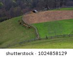 ancient old farming in the... | Shutterstock . vector #1024858129