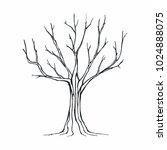 tree silhouette on white... | Shutterstock .eps vector #1024888075