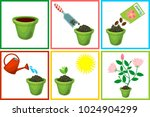 instructions on how to plant... | Shutterstock .eps vector #1024904299