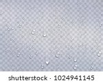 realistic water droplets on the ... | Shutterstock .eps vector #1024941145