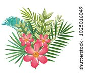 tropical and exotics flowers... | Shutterstock .eps vector #1025016049