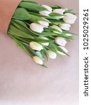 greeting card with tulips.... | Shutterstock . vector #1025029261