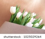 greeting card with tulips.... | Shutterstock . vector #1025029264