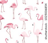 pink red exotic flamingo birds... | Shutterstock .eps vector #1025036854