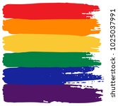 grunge rainbow flag isolated on ... | Shutterstock .eps vector #1025037991