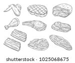 meat and chicken sketch icons.... | Shutterstock .eps vector #1025068675