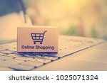 online shopping   ecommerce and ... | Shutterstock . vector #1025071324