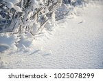 snow covered branches as... | Shutterstock . vector #1025078299