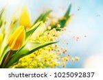 flower spring background  8... | Shutterstock . vector #1025092837
