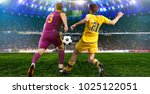 soccer ball on the field of...   Shutterstock . vector #1025122051