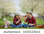 two children  boy brothers ... | Shutterstock . vector #1025123611