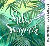 hello summer lettering. raster... | Shutterstock . vector #1025126701