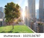 3d rendering. garden in a big...   Shutterstock . vector #1025136787