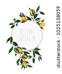 hand drawn watercolor lemon... | Shutterstock . vector #1025138059