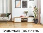 elegant living room interior... | Shutterstock . vector #1025141287