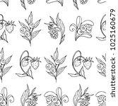 set of berries vector...   Shutterstock .eps vector #1025160679