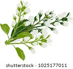 illustration with spring... | Shutterstock .eps vector #1025177011