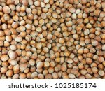 top view of hazelnuts on market | Shutterstock . vector #1025185174