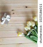 gift card with spring... | Shutterstock . vector #1025186011