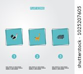 set of zoology icons flat style ... | Shutterstock .eps vector #1025207605