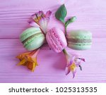 macaron pink wooden background  ... | Shutterstock . vector #1025313535
