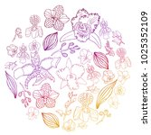 hand drawn set of orchid... | Shutterstock .eps vector #1025352109