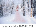 a girl is an elf  stands in a...   Shutterstock . vector #1025361691