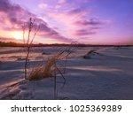 winter scene with ultraviolet... | Shutterstock . vector #1025369389