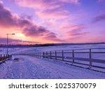 winter scene with ultraviolet... | Shutterstock . vector #1025370079