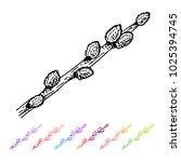 vector kidney bud verba black... | Shutterstock .eps vector #1025394745