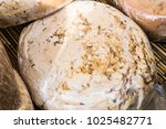 traditional cheese with worms...   Shutterstock . vector #1025482771