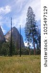Small photo of Glorious steep granite rock wall in Yosemite national Park, California, USA.
